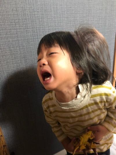 【「かわいそう」、「助けてあげよう」は傲慢……等】2018/10/25のTwitterまとめ